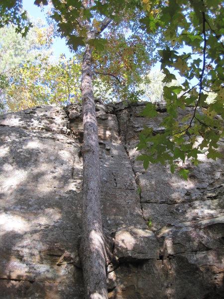 Rock Climbing Photo: Tishamingo State Park Mississippi