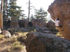 Rock Climbing Photo: trippy