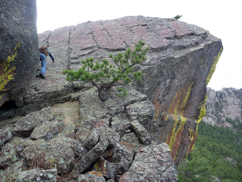 Rock Climbing Photo: Final climb to the Dreadnaught summit.