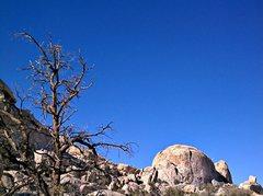Rock Climbing Photo: South Astro Dome