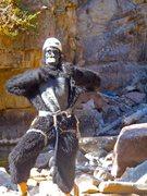Rock Climbing Photo: MONKEY!