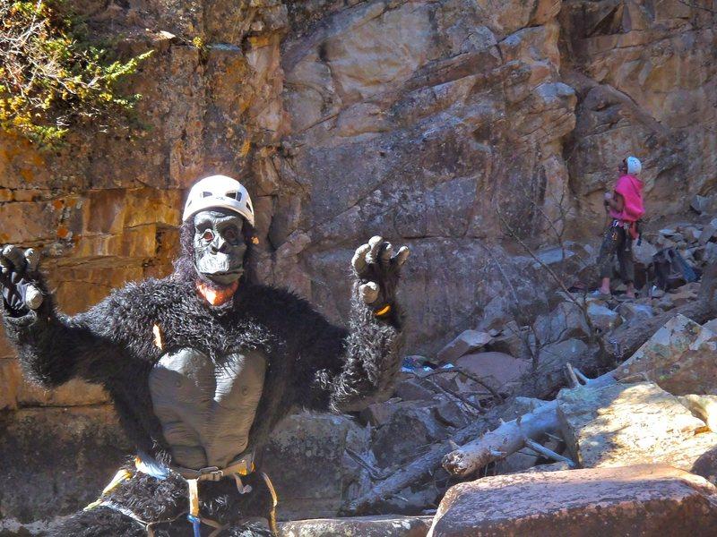 Rock Climbing Photo: Whoopie!