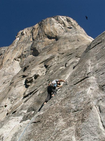 Karl leading Pine Line (5.7) on El Capitan.