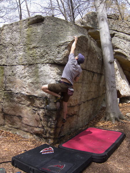 Rock Climbing Photo: Tree Bola Direct-Direct (also the finish of Tree B...
