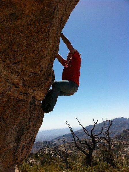 Rock Climbing Photo: Leap of Pleepleus