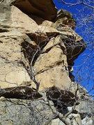 Rock Climbing Photo: Bolts on left, cracks on right.