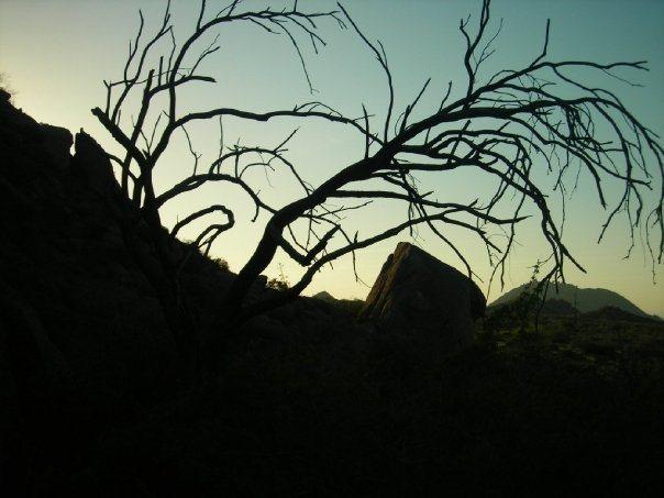 Rock Climbing Photo: The McDowells