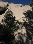 Rock Climbing Photo: Murphy's Law.
