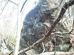 Rock Climbing Photo: A Potanipo boulder.