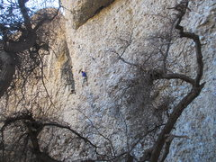 Rock Climbing Photo: Long moves through the middle of Orgasmo, photo by...