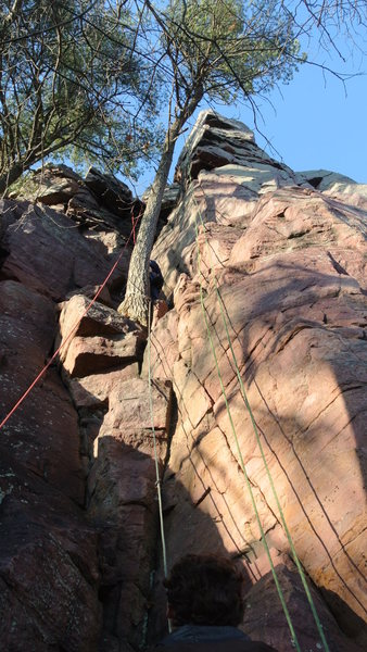 Rock Climbing Photo: Miss Piggy's Pleasure takes the line of the rope o...