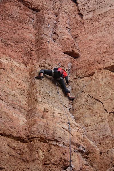 Rock Climbing Photo: Dana Walenta leading LaCholla Jackson.