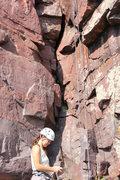Rock Climbing Photo: 30 second crack