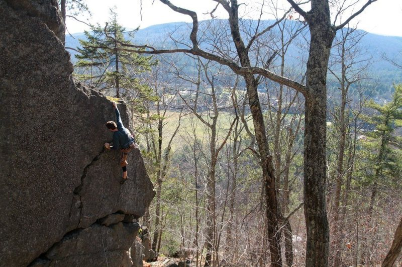 jared topping out