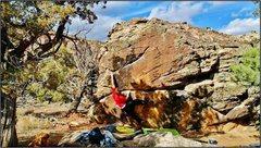Rock Climbing Photo: Reaching the crimp on Va Va Voom.