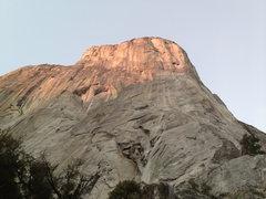 Rock Climbing Photo: Tough living....