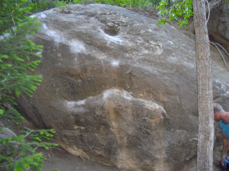 Infestation Boulder