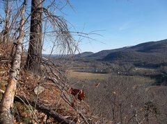 Rock Climbing Photo: The view