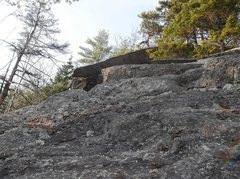 Rock Climbing Photo: Got to go mental to reach this face scenery becaus...