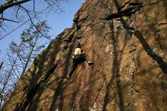 Rock Climbing Photo: Entertainer