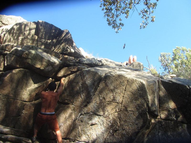Rock Climbing Photo: Right facing corner problem