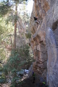 Rock Climbing Photo: interesting crux  perfect warmup for the area