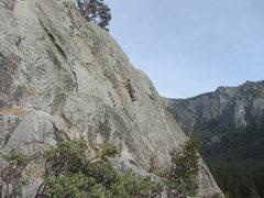Rock Climbing Photo: Pine Line