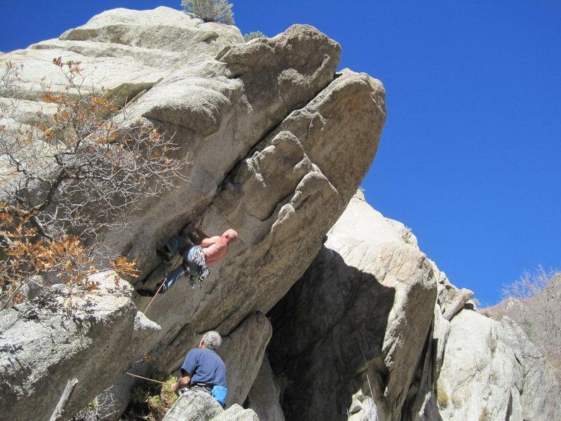 Rock Climbing Photo: Tom Hore pulling hard.