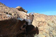 Rock Climbing Photo: The crux mantle
