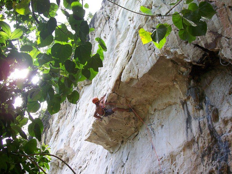 Rock Climbing Photo: Rajiv with gratuitous pose after powering through ...