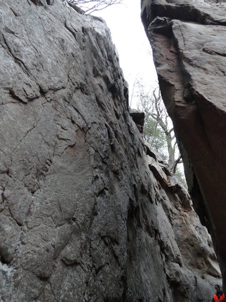 Rock Climbing Photo: Barking Spiders