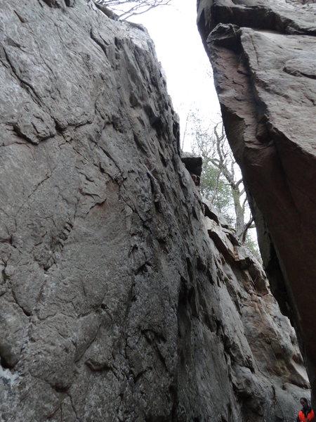 Rock Climbing Photo: Barking Spiders