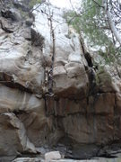 Rock Climbing Photo: Homer