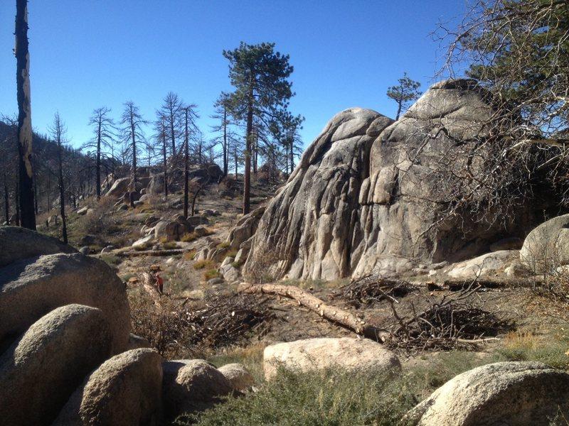 Rock Climbing Photo: Toot Sweet as seen from the Hanna Flat Bike Trail.
