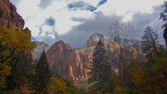 Rock Climbing Photo: Autumn in Zion.