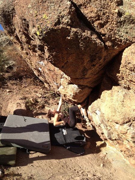 Rock Climbing Photo: Low on Pig Dog.