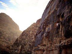 Rock Climbing Photo: Late day climbing on Topless Twins. November 2012.
