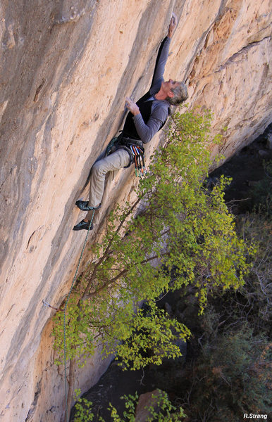 Ed crushing the small holds<br> Black Plague (5.13)