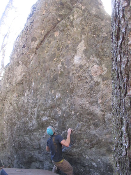 "Rock Climbing Photo: Early into ""Wild Wood"""