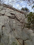 Rock Climbing Photo: Look for the third bolt line as you get to the mai...