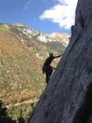 Rock Climbing Photo: local badass on sasquatch