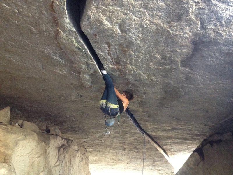 Rock Climbing Photo: vanessa almanza putting the fanessa on the 'ol tre...