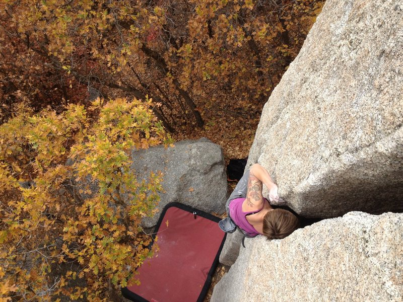 Rock Climbing Photo: christina durtschi on the offwidth just off the tr...