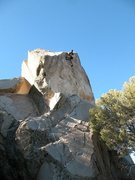 Rock Climbing Photo: Palm Pilot (5.10b), Onyx Summit Crag