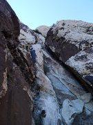 Rock Climbing Photo: the Charlie Brown Xmas pine tree on P1 proper