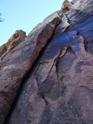 Rock Climbing Photo: the raps start in the gully below this crack