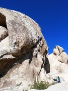 Rock Climbing Photo: Lazy Day (5.7), Joshua Tree NP