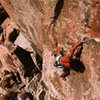 Scott Cosgrove on the FA of <em>Sun Bowl</em> (5.13a), Joshua Tree NP<br> <br> Photo by Phil Bard