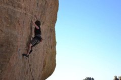 Rock Climbing Photo: Sticking the hardest move of the bottom half. Phot...