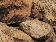 Rock Climbing Photo: Gigi comes up p1.